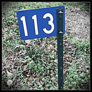 Here's your sign: 113